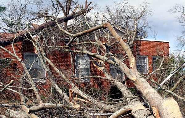 Protecting Windows From Wind Damage: Why and How
